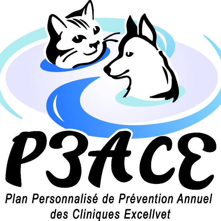 P3ACE