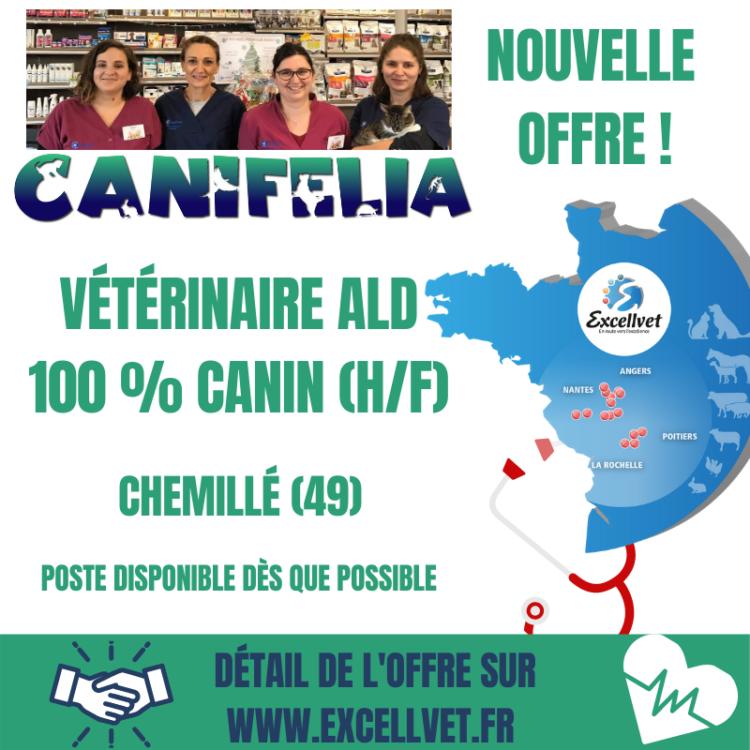 OFFRE POSTE VETERINAIRE   CANIN (H/F) disponible dès que possible.